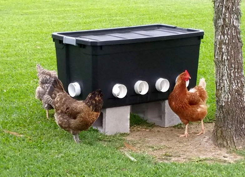 Can Chicken Feeder