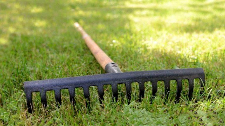 How to pick garden rake