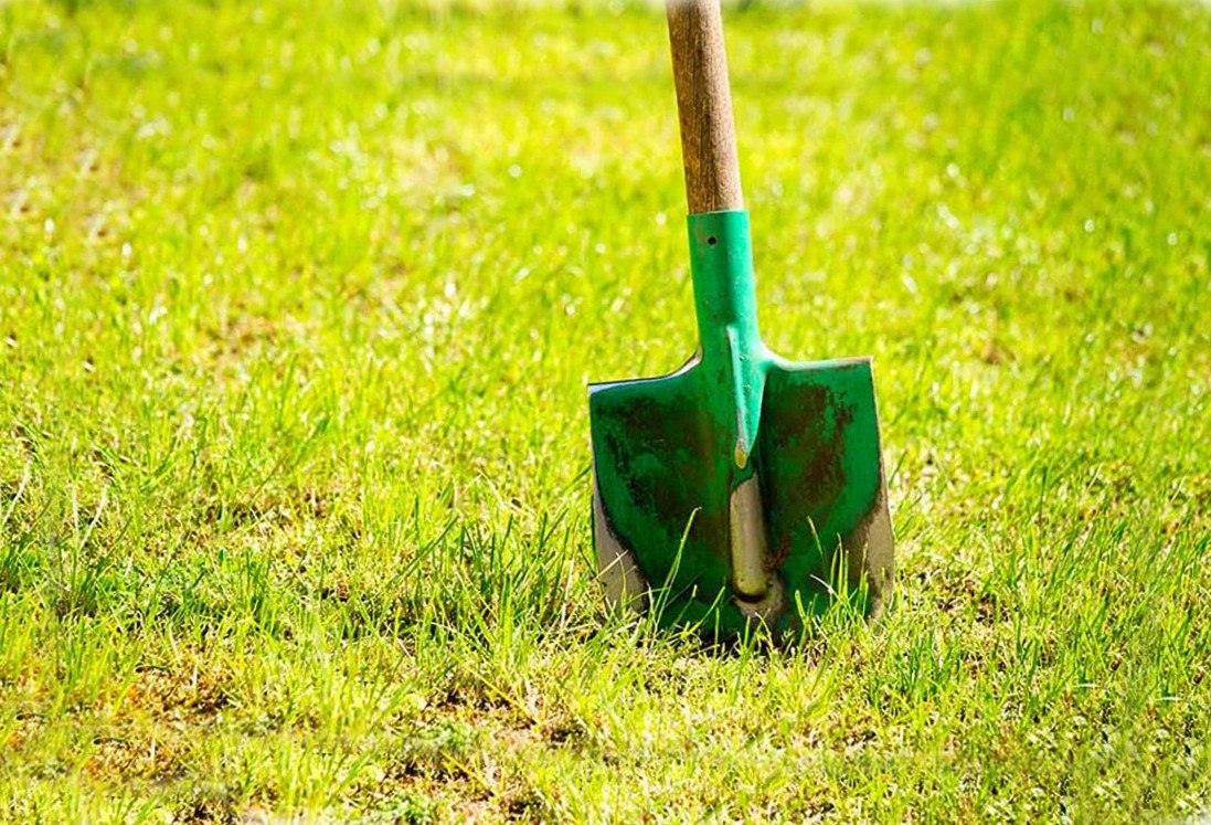 Shovel on a lawn